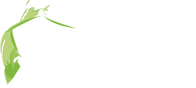 MS Immobilier